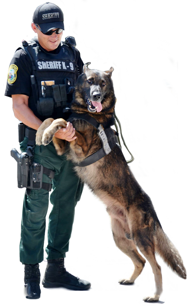 Citrus County Sheriff Deputy and his K9